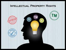 PBGN 3205 (Intellectual Property Rights)