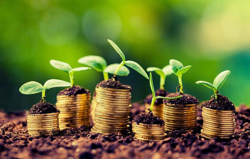 Fundamentals of Agricultural Economics (Econ 1201)
