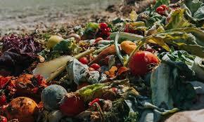 Fdsc 3205 Food industry waste management