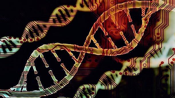 MBB 515  Introduction to Bioinformatics