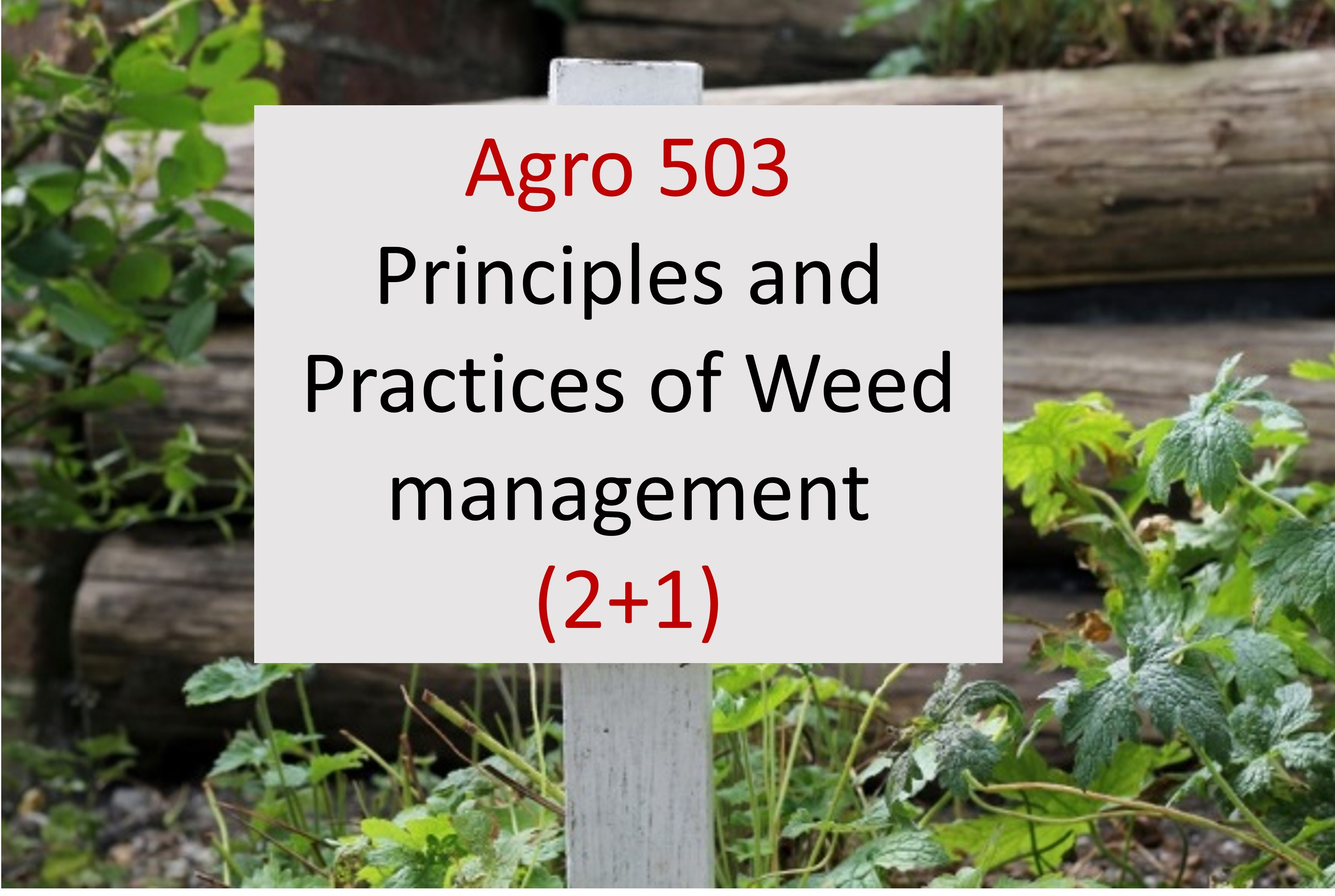 Agro 503 Principles and Practices of Weed management (2+1), Semester 2/ 2019 PG